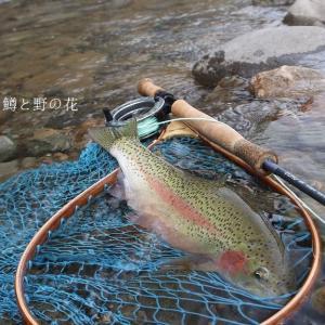 春の日のいい釣り