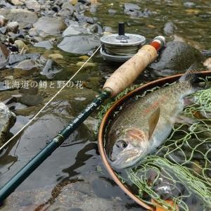 上流域の釣り・・・その②