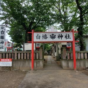 お参りしてきました、源氏ゆかりの「白幡神社」