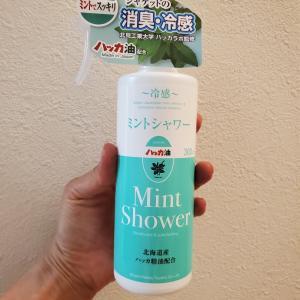 ミントシャワーで冷感アップ♪そして明日のベイサイドは?