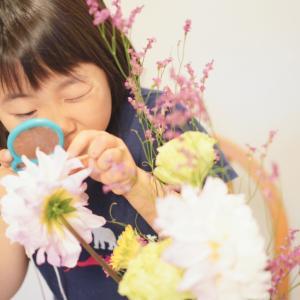 【父の日花育始まりました】大きなダリアで花遊び。