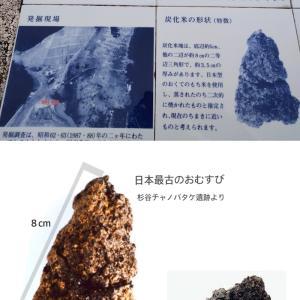 【食育クイズ:Vol.227】日本最古のおにぎりクイズ!