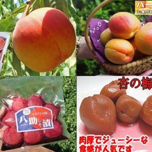 【食育クイズ:Vol.273】夏が旬の果物「あんず」!生産量日本一はどこ?