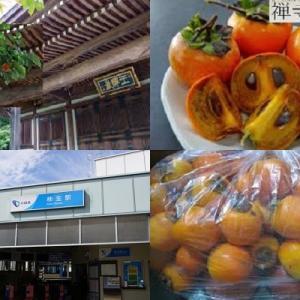 【食育クイズ:Vol.352】10月21日は「禅寺丸柿の日」! 発見されたのは何時代?