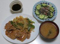 母からの宅配便/ 最近の夕ご飯