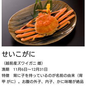 """""""(*'▽'*)わぁ♪せいこ蟹"""""""