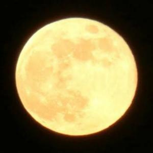 中秋の名月で満月