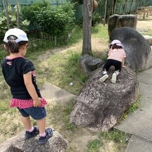 柳公園であそびました
