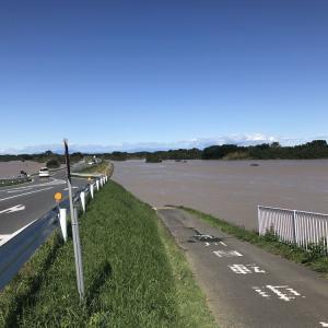【記録】役割を果たし水没した荒川河川敷…台風19号の猛威