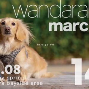 3月8日(日)wandarake(わんだらけ)14に参加します!
