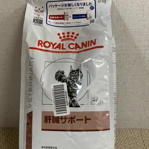 山田有希様・一川 陽子様・平出様ご支援ありがとうございます!