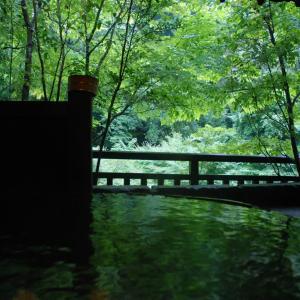 四季 薫 【雨音を聴きながら】