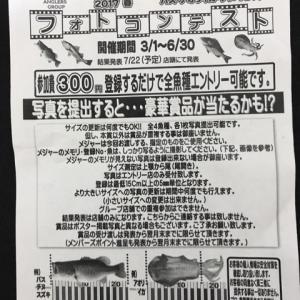 7/1☆淡路島釣行