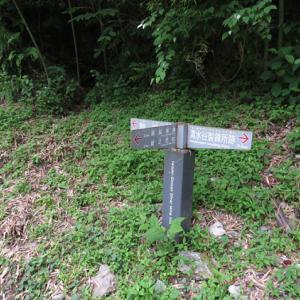 6月19日の石見銀山*清水谷精錬所跡-銀山町*