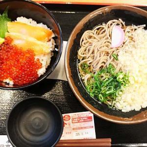 『宮本むなし(12)JR新長田駅前』●いくらとサーモンの親子丼(ミニ)とかけそばのセット