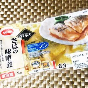 『おさかなのIPPIN(1)』●さばの味噌煮