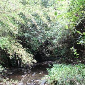 元ダム計画予定地に眠る暗闇水路隧道~沢山川の水路隧道②