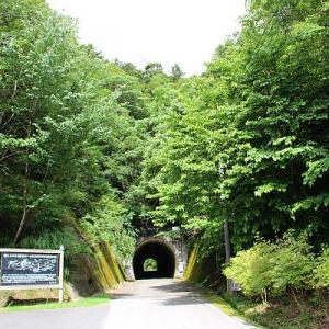 あまり林道してない林道~渕ヶ沢トンネル