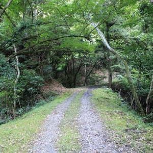 志駒線の水路隧道②