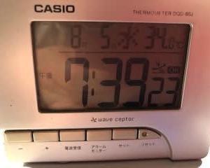 暑い1日でしたね