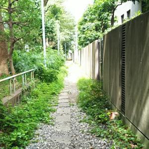 初台〜西新宿の甲州街道裏道中