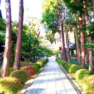 東京文化財ウィークで「廣園寺」仏堂など公開されてました