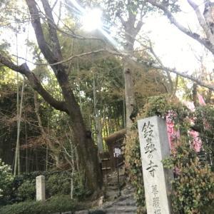 数年ぶりの華厳寺(鈴虫寺)と京都