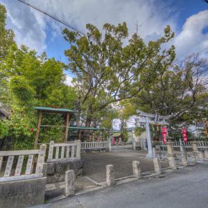 若江岩田まで歩いて来ました 其の7