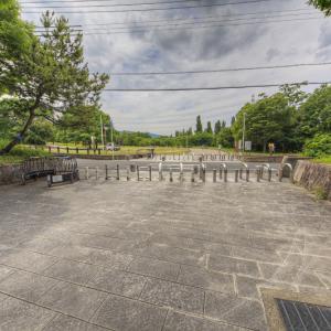 山田池公園を彷徨う 其の8