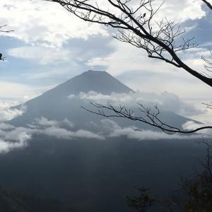⑧富士山原始林トレイルラン