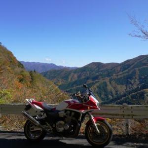 ナメゴ谷の紅葉Ⅱ