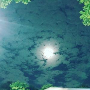 先日の中秋の名月