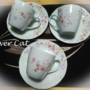 さくら 桜咲く マグカップ & お皿
