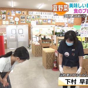 村雨美紀アナ 巨乳胸チラ & きゅうりを食べる!!【GIF動画あり】