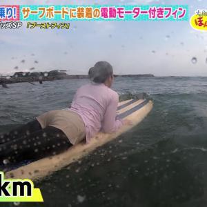 武田訓佳キャスター サーフィンに挑戦!!【尻・巨乳】