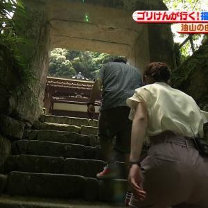 NHK野口葵衣アナ 階段を登るお尻にパン線!!【GIF動画あり】