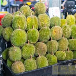 マレーシアでドリアン天国してきました