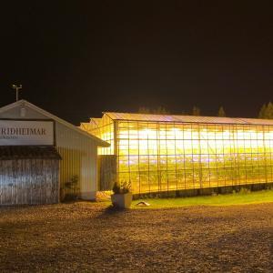 アイスランド トマト農家見学