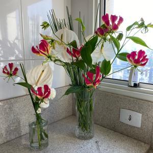 今週のお花 GARMIN使えず