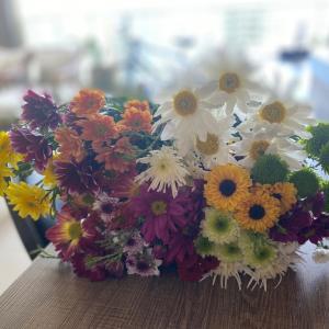 今週のお花 コロナ渦の中 友だちとの付き合い方はどうする?