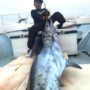 予告通りにカジキマグロ釣ってました!!! 与那国島