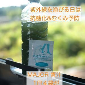糖化の予防に青汁