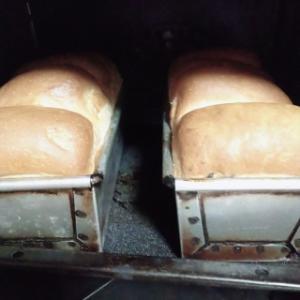 岡ぱん型で食パン