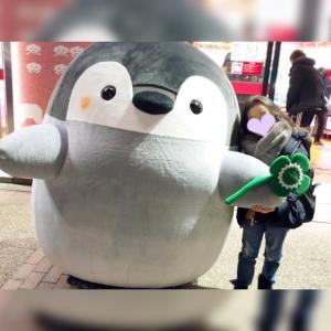 ☆ポチ【楽天マラソン】選べるコンバース福袋!☆