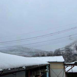 toned body日記819 雪だから自宅待機!なら読書(^^)