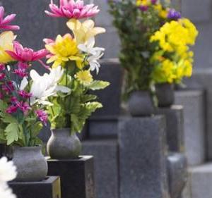 お墓参りと跡継ぎ問題復活