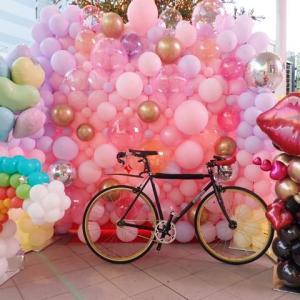 通勤自転車燻迦薫伽パンク