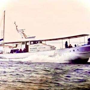 20日(水) タチウオ狙い出船します