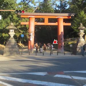 奈良公園を散策