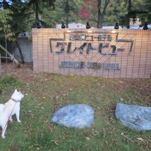 北海道札幌「定山渓ビューホテル」